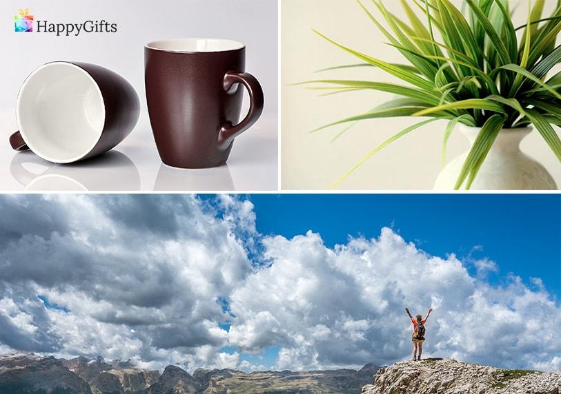 чаши за кафе, почивка, цвете в саксия