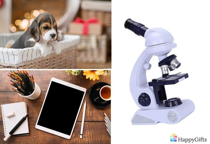 подарък за 10 годишно момче; кученце, теблет, микроскоп