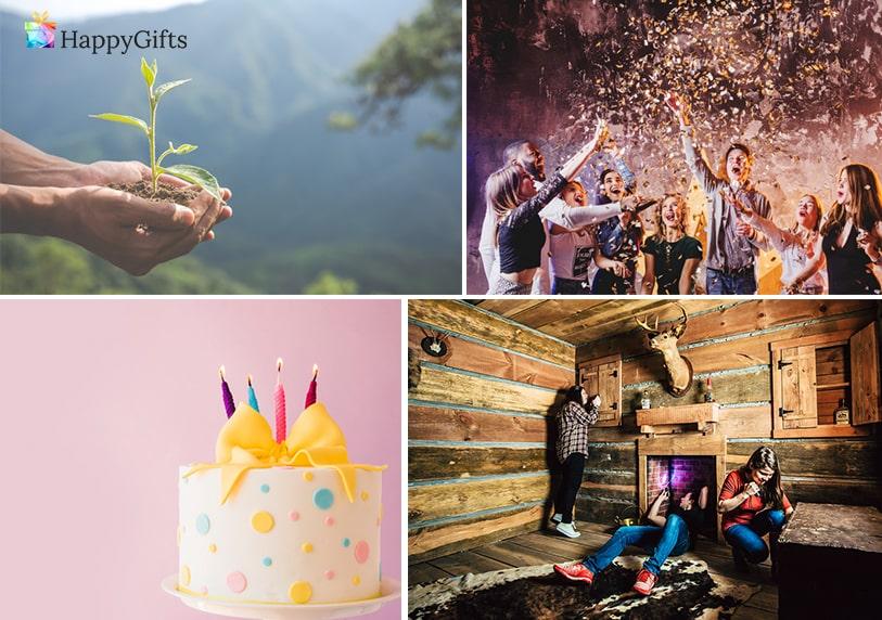 подаръци за рожден ден, растение, дръвче, парти, торта, escape room